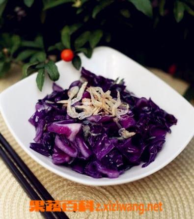 果蔬百科紫甘蓝的家常做法大全